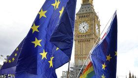 Lidé protestující vůči odchodu Británie z EU