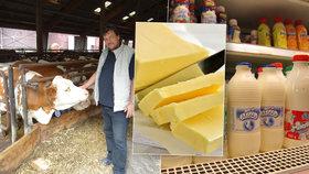 Zemědělci zuří kvůli výkupním cenám mléka.