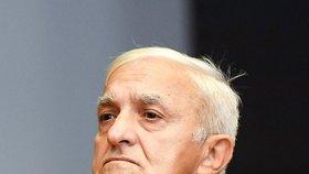 Vasiljković dostal v Chorvatsku 15 let.