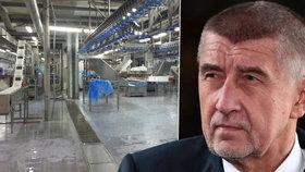 Předseda hnutí ANO Andrej Babiš odmítá, že by jeho zaměstnanci ve Vodňanech byli nuceni pracovat ve špatných podmínkách.