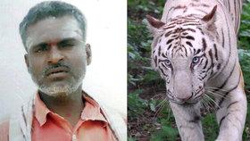 Bílí tygři rozsápali v indické zoo ošetřovatele.