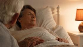 Chřipka má v Česku už 33 obětí. Nejčastěji umírali senioři s další těžkou nemocí.