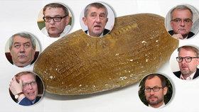 Politici, znáte denní chleba lidí?