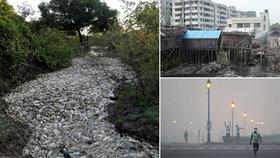 Znečištění ročně zabíjí víc lidí než války nebo kouření.