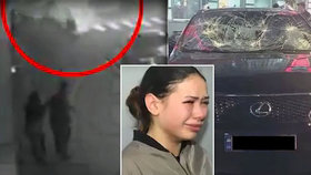 Dcera ukrajinského oligarchy při nehodě zabila pět lidí: U soudu se rozplakala.