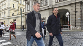 Pokud Andrej Babiš (ANO) využíval služební auto k cestám po kampani, bude to muset nahlásit.