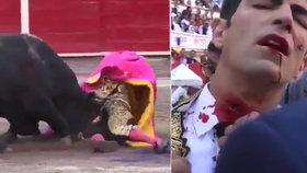 Při býčích zápasech v Mexiku probodl býk toreadorovi krk.