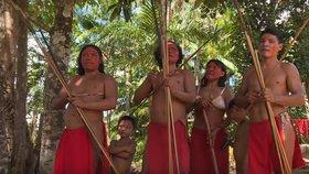 Domorodci z amazonského pralesa jsou ochotni udělat všechno pro to, aby zabránili těžařům v kácení stromů. I jdou do politiky.