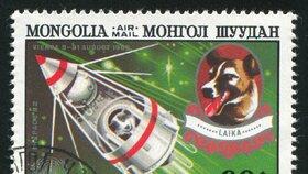 Příběh Lajky, která umožnila další vývoj lidského vesmírného programu, se dodnes připomíná na známkách.