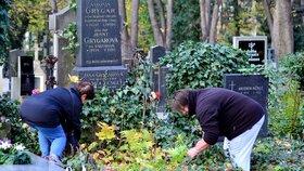 Přibývají případy, kdy chtějí hřbitovy opětovně zaplatit už zaplacený hrob. (Ilustrační foto)