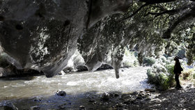 V Izraelském lese došlo k neobvyklému pavoučímu úkazu.