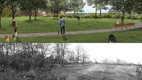 Pejskaři v Karlíně zaplesají: Příští rok dostanou nové hřiště pro své miláčky