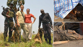 Kynoložka Hanka odcestovala se svou fenkou Camou do Konga, aby se zapojila v boji proti pašerákům zvířat.