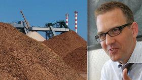 EPH v čele s Danielem Křetinským koupili dvě elektrárny na biomasu v Itálii
