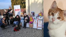 Velká charitativní akce Blesku a vydavatelství CZECH NEWS CENTER: 619 kg dobrot pro opuštěné hafany a kočky