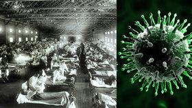Virus chřipky se rád mění, aby se na něj nemohl náš imunitní systém připravit.