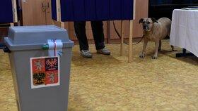 První kolo prezidentských voleb v České republice