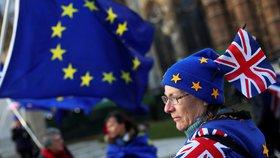 Odpůrci brexitu protestovali před budovou parlamentu v Londýně.