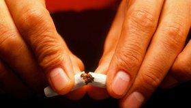 """Protikuřácký zákon """"donutil"""" kuřáky méně kouřit (ilustrační foto)"""