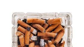 V České republice podle studie Světové zdravotnické organizace kouří každý pátý školák ve věku 13-15 let