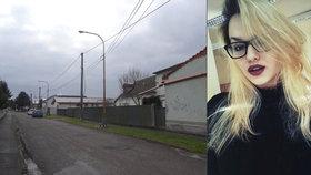 Policie ukončila vyšetřování smrti šestnáctileté Anny. Podle něho se dívka oběsila sama v opilosti.