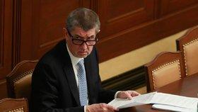 Andrej Babiš chce zmírnit povinnosti při podávání majetkových přiznání.