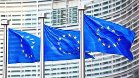 Evropská unie umístila na seznam invazivních druhů celkem 49 organismů.
