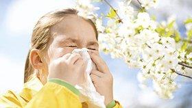 Alergie u dětí jsou na ústupu, přibývá astmatiků (ilustrační foto).