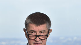 Premiér v demisi a šéf hnutí ANO Andrej Babiš n