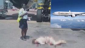 Letuška společnosti Emirates zemřela po pádu z letadla! Šlo o sebevraždu?
