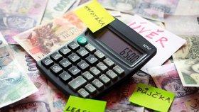 Na letošek stát vymezil na půjčky pro mladé rodiny 650 milionů korun.
