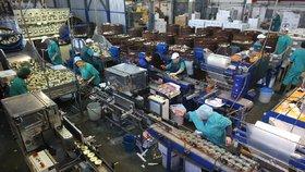 České fabriky se dlouhodobě potýkají s nedostatkem zaměstnanců. Už musejí sahat i po lidech z ciziny. (Ilustrační foto)