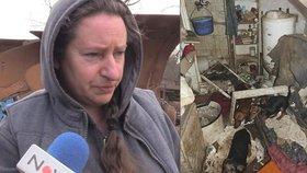 """Takto probíhala záchrana zvířat z """"koncentráku"""" u Štětína, majitelkou týraných psů je místní doktorka."""