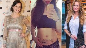 Těhotné celebrity