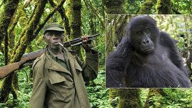 Pět správců národního parku Virunga zastřelila konžská milice.