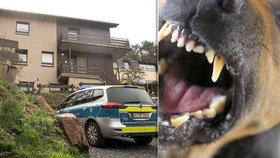 Pes v Německu napadl sedmiměsíční dítě, to podlehlo svým zraněním, incident vyšetřuje policie.