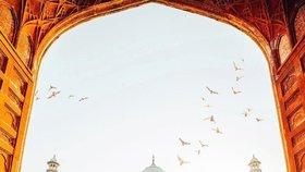 Proslulý Tádž Mahal se zbarvuje do zelena. Na vině je hmyz.