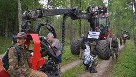 Lesnické zásahy a rozsáhlá těžba dřeva v polském chráněném Bělověžském pralese nejsou v souladu s právem Evropské unie.