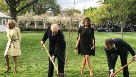 Trump s Macronem při zasazení dubu
