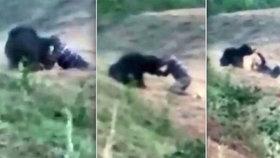 Muž si chtěl udělat selfie s medvědem. Šelma ho roztrhala na kusy.