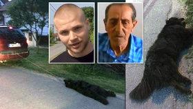 Důchodce za autem usmýkal psa k smrti: Svědek ho za to prý brutálně zbil.