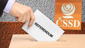 Sociální demokraty čeká důležité referendum. Po letech budou rozhodovat o směřování strany všichni členové. Vstoupit do vlády, nebo jít do opozice?