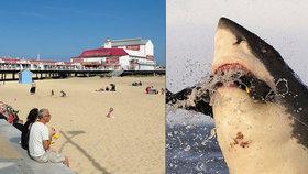 Britové mají strach, že u letoviska Great Yarmouth sídlí žralok bílý.