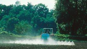 Evropská unie zakázala tři běžně používané pesticidy. Čeští zemědělci věští problémy.