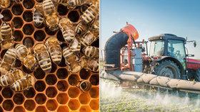 Tribunál Soudního dvora Evropské unie dnes potvrdil platnost omezení při užívání tří pesticidů, které mají podle vědců škodlivý vliv na včely.