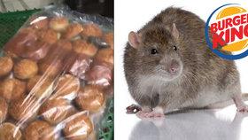 Otřesné! V jednom z Burger Kingů se v jídle proháněly krysy. Podívejte se na video!
