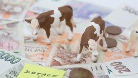 Evropská unie chce po Česku sankci 1,16 miliardy korun za chyby v dotacích pro zemědělce
