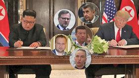 Čeští politici jsou k hodnocení schůzky mezi americkým prezidentem Donadlem Trumpem a severokorerjským vůdcem Kim Čong-unem v Singapuru opatrní. Čekají, co bude následovat.