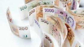 Ve fondu bylo ke konci loňského roku 21,96 miliardy korun.