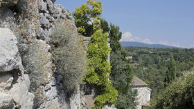 Miliardář se zřítil ze zdi při návštěvě Provence.